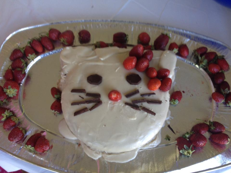 Princess Kitty Cake